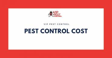 How Much Does Pest Control Usually Cost?