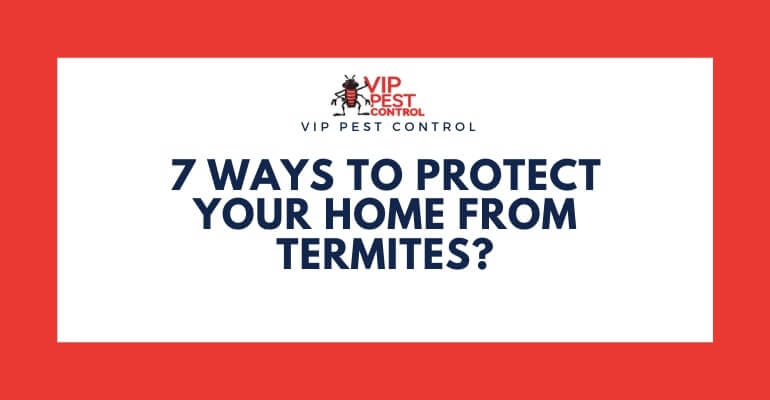 7 Ways to Protect Your Home from Termites in Australia