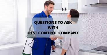 7 Questions You Must Ask Before Hiring A Pest Control Company