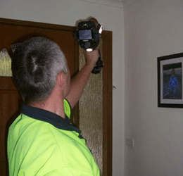 pre purchase pest inspection melbourne