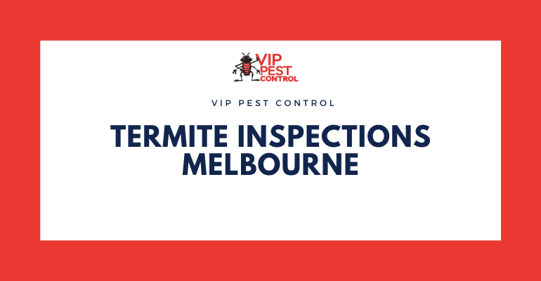 Building and Termite Inspections Melbourne