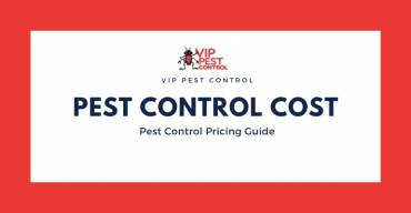 Pest Control Melbourne Price – Pest Control Pricing Guide 2020
