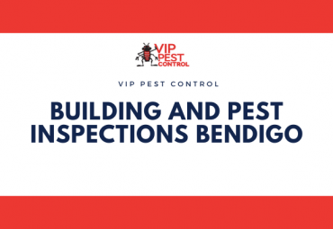 Building and Pest Inspections Bendigo