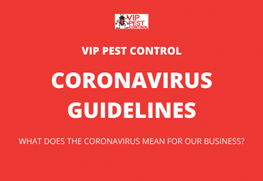 Coronavirus Guidelines For Pest Control Companies In Australia